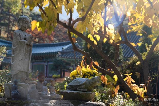 1311 FALL AUTUMN SEOUL - HANA-Muv photography-9787