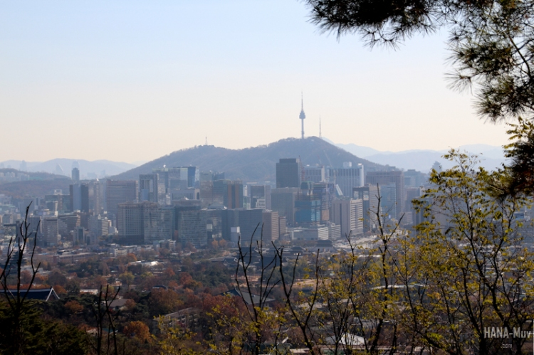 1311 FALL AUTUMN SEOUL - HANA-Muv photography-9942